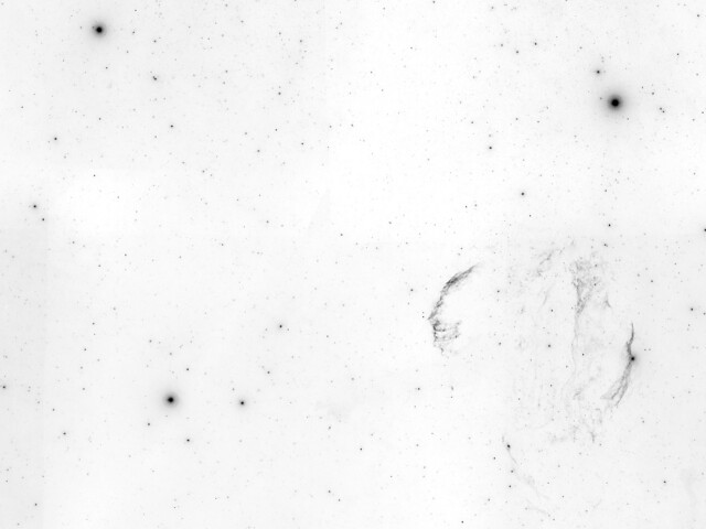 VCSE - A Fátyol-köd negatívban a Hattyúban - Kép forrása: Aladin Sky Atlas