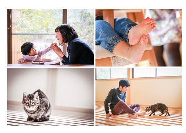 自宅で家族写真 ネコも一緒に 愛知県豊田市