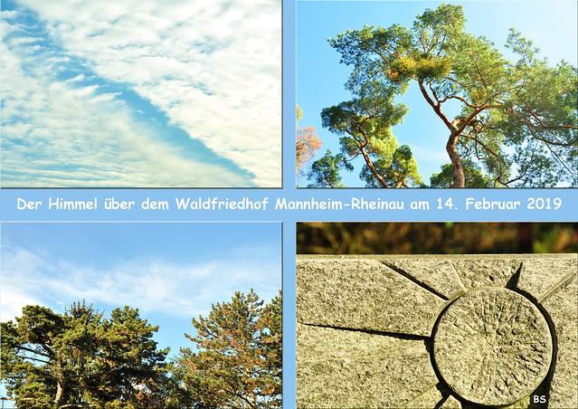 Der Himmel über dem Waldfriedhof Mannheim-Rheinau am 14. Februar 2019 ... Kiefernwäldchen ... Fotos: Brigitte Stolle