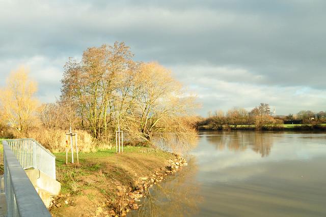8. Januar 2019 ... Die Fischkinderstube am Neckar zwischen Edingen und Neckarhausen ... Foto(s): Brigitte Stolle