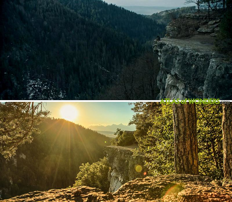 Forest cliff sequence in Poland