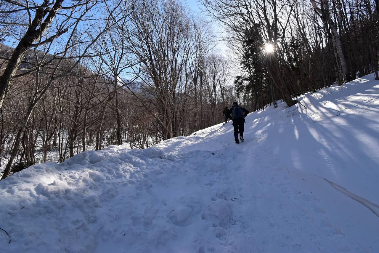 ヤカイ沢ルートへの林道歩き