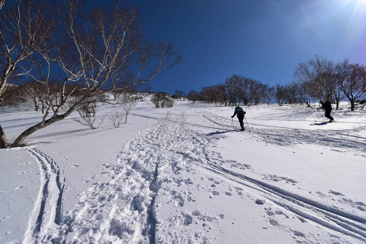 冬の平標山~仙ノ倉山 ヤカイ沢ルート日帰り雪山登山