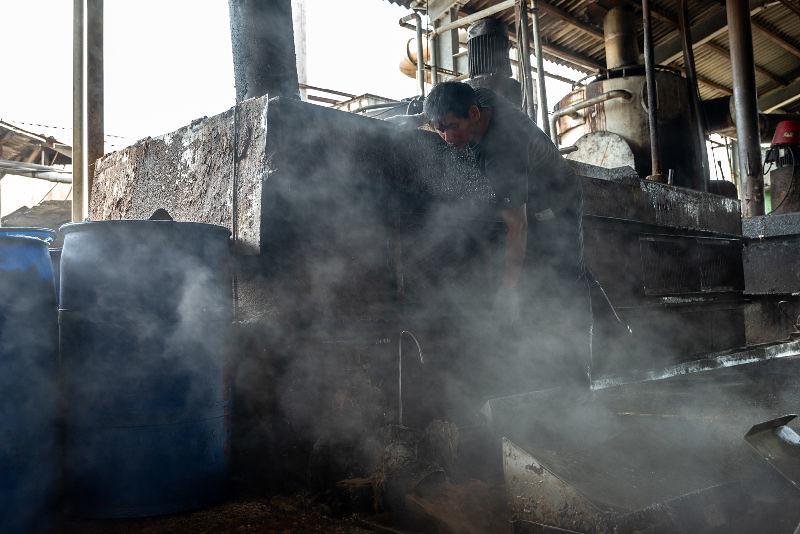 1155場有廚餘蒸煮設備、但尚未獲得環保署列管的廚餘養豬業者,需一週內提出再利用檢核申請。