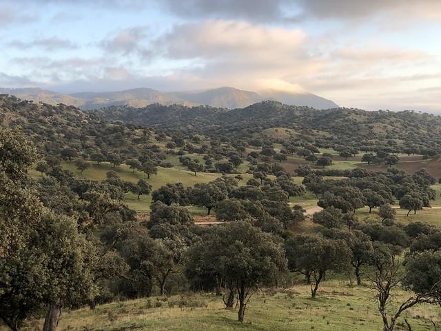 Paisajes alrededor de la Sierra de Andújar en Jaén