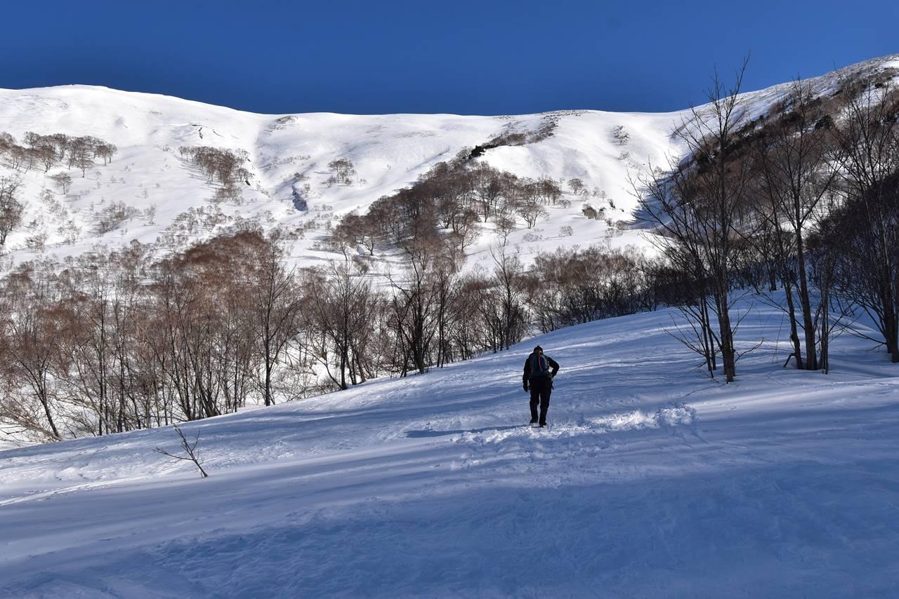 ヤカイ沢ルートから眺める平標山の稜線