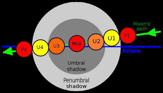 VCSE - A kontaktusok magyarázata - Forrás: wikipédia