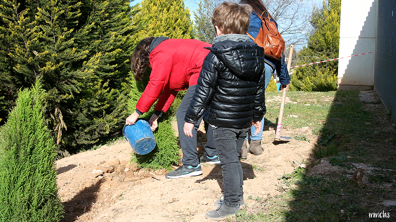 plantando un árbol con niños