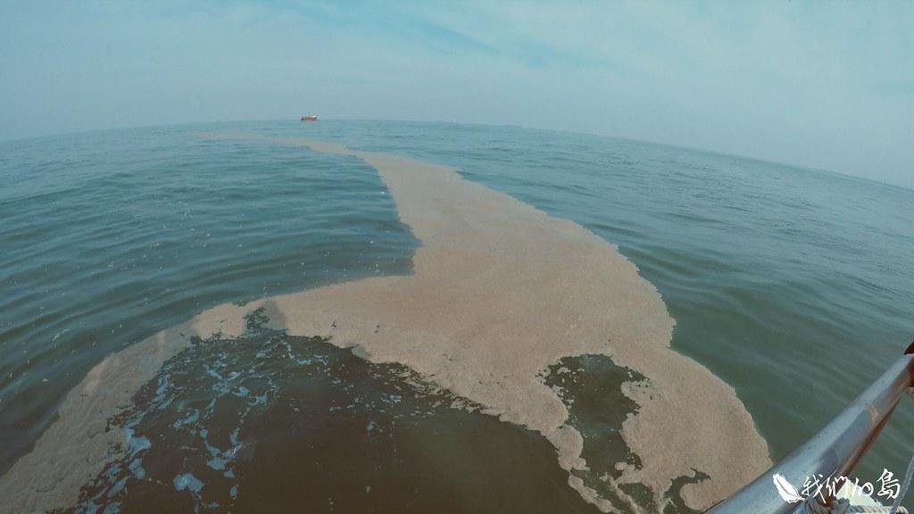 高雄紅毛港外海的油污帶跟不明泡沫漂流帶,檢測發現屬於環境賀爾蒙的酚含量偏高。