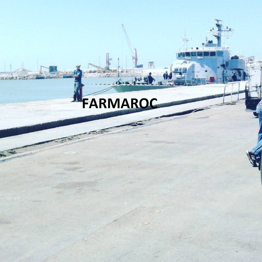 Royal Moroccan Navy Patrol Boats / Patrouilleurs de la Marine Marocaine - Page 13 46078573334_ccd5571ff0_o