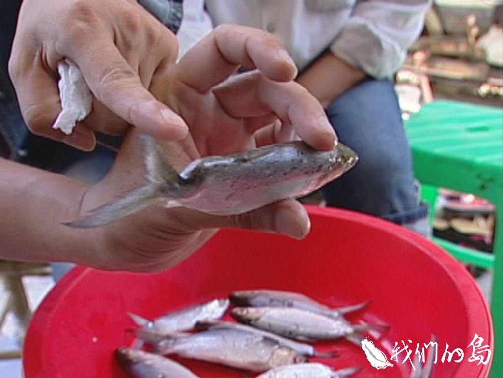 經常在海水池捕魚食用的居民恍然大悟,豐美魚蝦是造成他們滿身病痛的元兇。