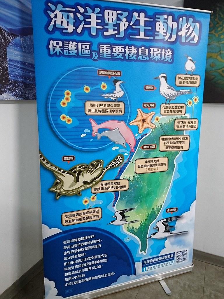 海洋保護區因不同目的成立由不同單位管理,海保署將統籌設置資訊平台。攝影:李育琴