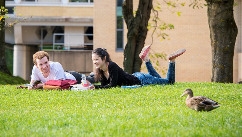 Two students sitting reading on the grass