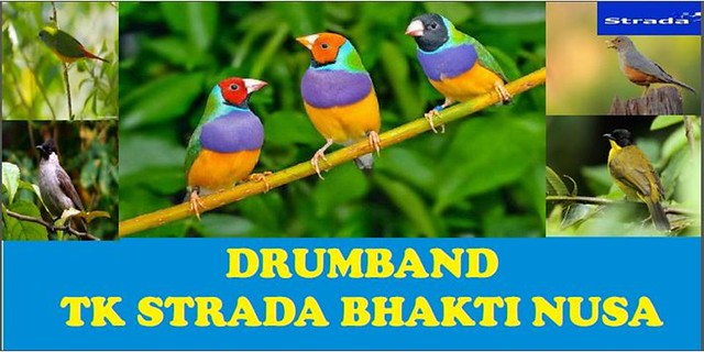 Drumband TK Strada Bhakti Nusa