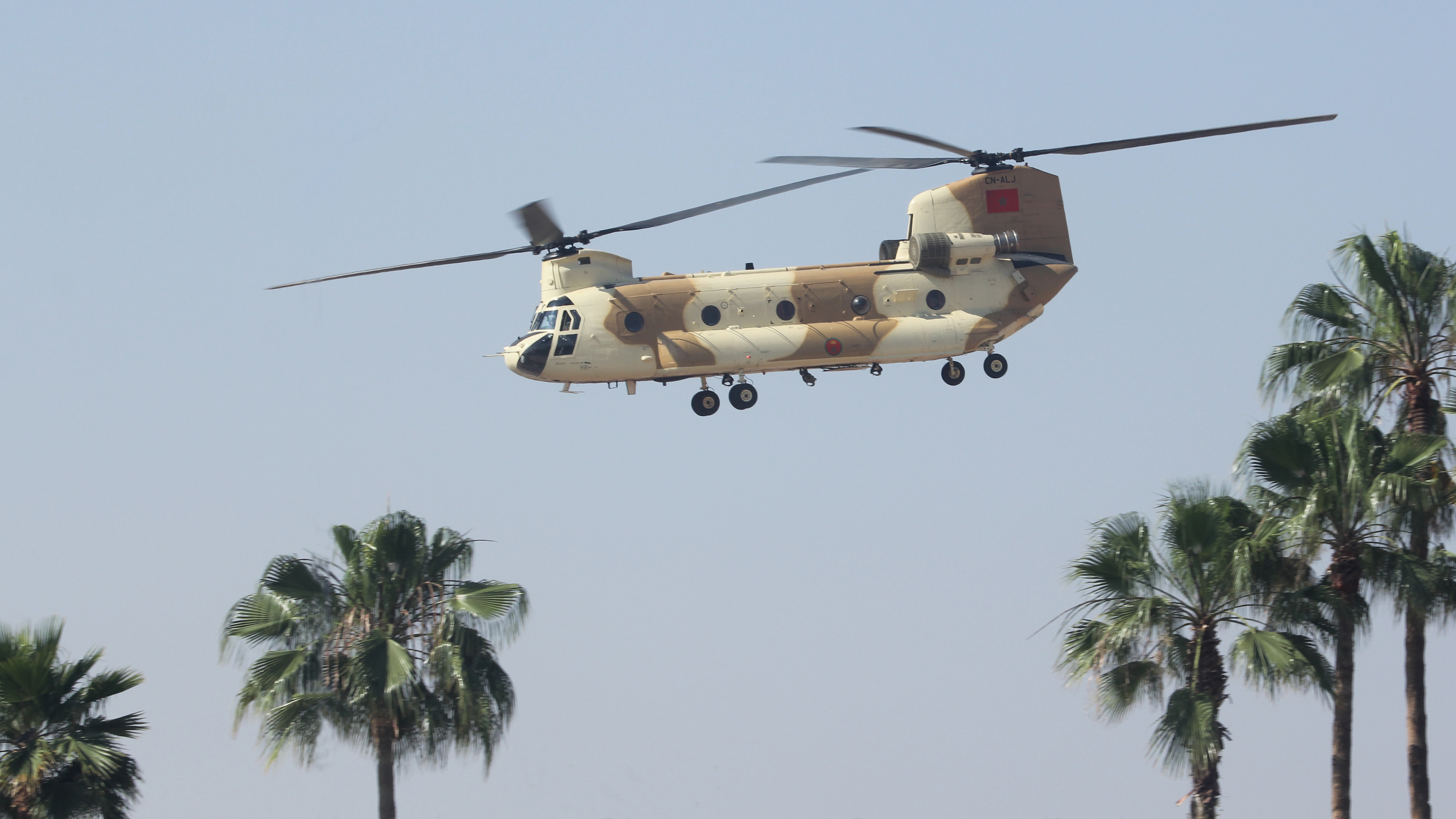 CH-47D CHINOOK des Forces Royales Air  - Page 3 32246137657_30eca2bb8b_o