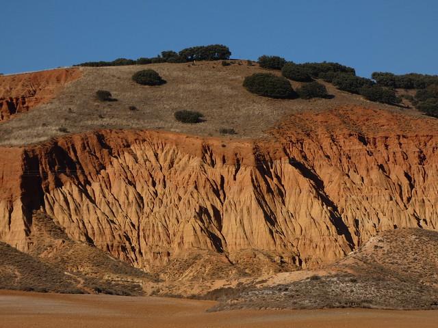 Los Tollos de Navarrete (Territorio Jiloca Gallocanta)