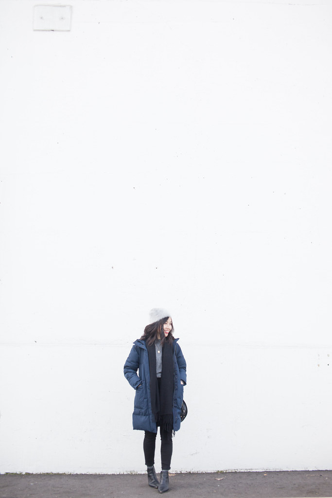 everlane renew parka