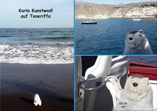 Februar 2019 ... Karla Kunstwadl mit V&J auf Teneriffa ... Fotos: Volker Stolle