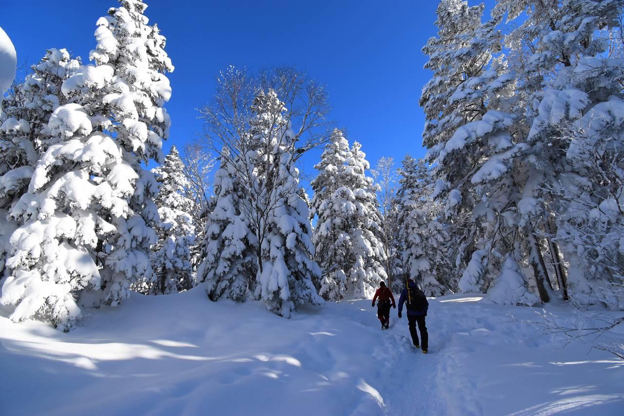 冬の西穂高岳 樹氷の登山道