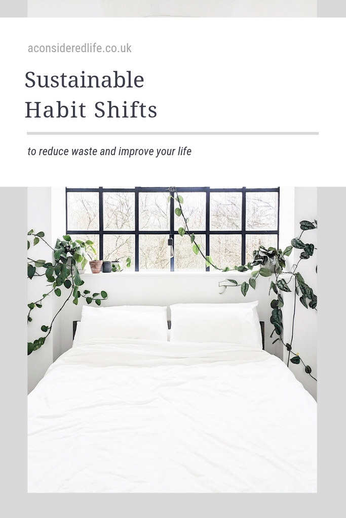 Zero Waste Habits Shifts