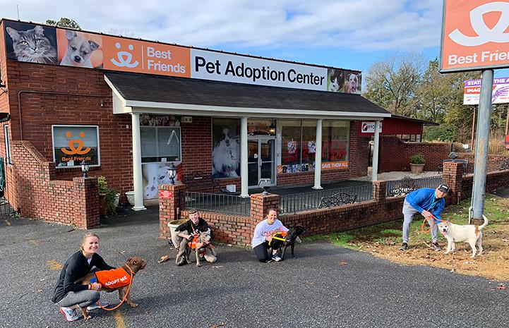 Best Friends透過志工協助照顧動物,並藉此讓更多民眾走入收容中心。圖片來源:Best Friends官網