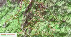 Carte du Haut-Cavu avec les chemins du Plan Terrier (vert) et du Cadastre Napoléon (ocre)