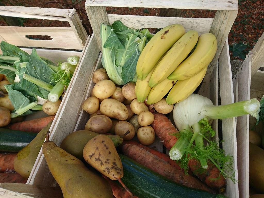 香蕉還是很新鮮,還有因為太小而被捐出的薯仔、啤梨和香蕉用作造沙律(沙拉)。