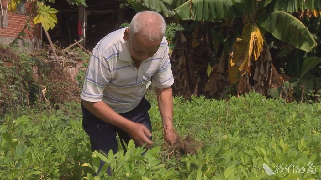 陳正宗土生土長在彰化縣二林鎮農場巷,跟他的父親一樣,當了一輩子蔗農。