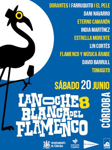 Cartel de la noche blanca del flamenco