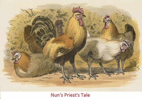 Nun's Priest's Tale Bangla Translation