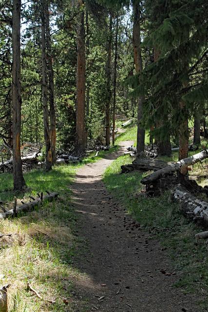 Pelican Creek Trail