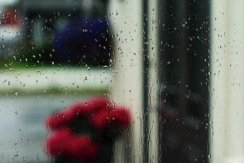 Havregrøt i regnværet