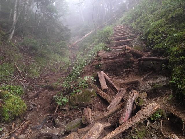 鳳凰山 ドンドコ沢 崩壊丸太階段