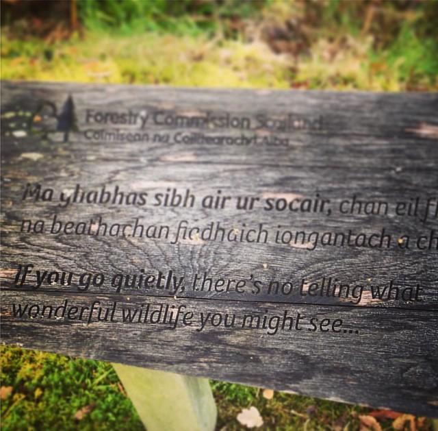 Garbh Eilean Wildlife Hide, Loch Sunart, Scottish Highlands #scotland #lochsunart #scottishhighlands #scottishscenery #garbheilean #sealoch