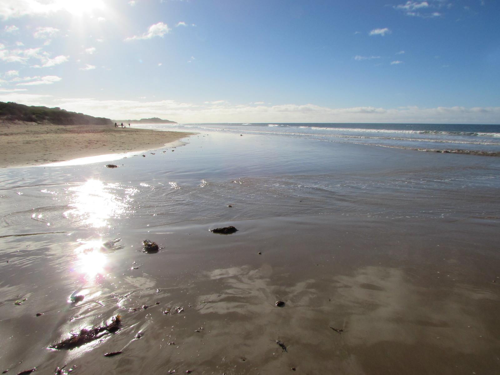 Beach near Torquay