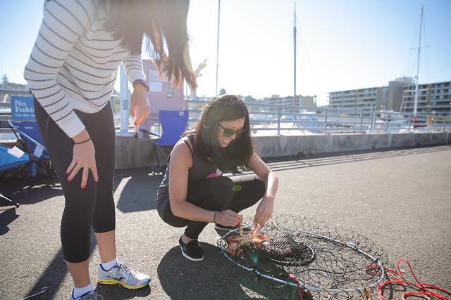 crabbing in Ballard, Seattle