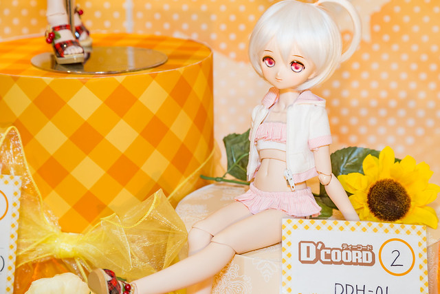 HTドルパ名古屋6 D'COORD DDH-01