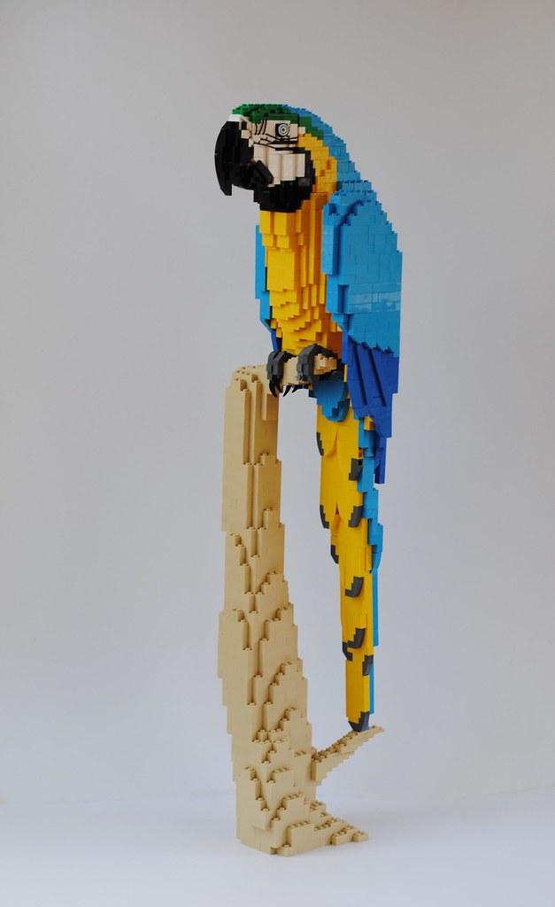 Το Ζωικό Βασίλειο από LEGO  - Σελίδα 6 28897404153_3caf78c1df_b