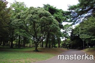 別府公園2