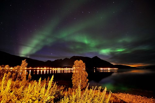 Lights by the road | by John A.Hemmingsen