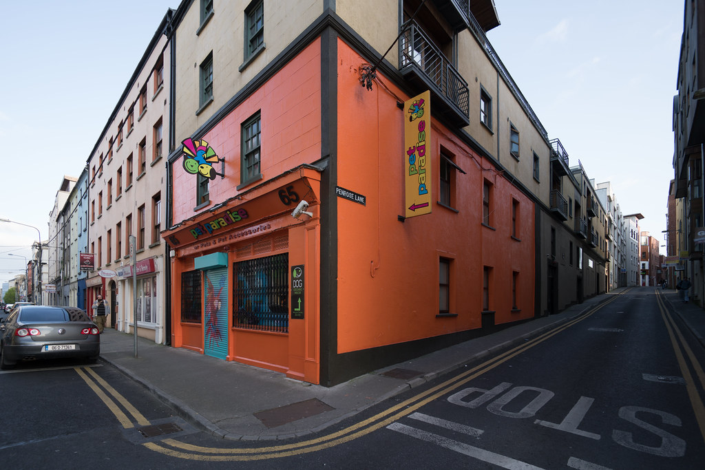 Pet Paradise [65 O'Connell St, Waterford]-120895