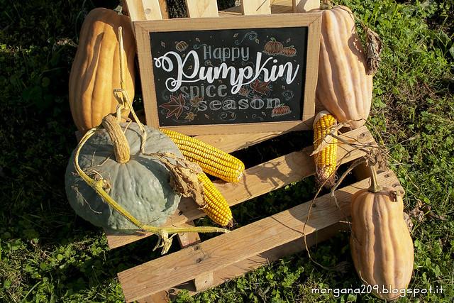 PumpkinSpiceSeason10w