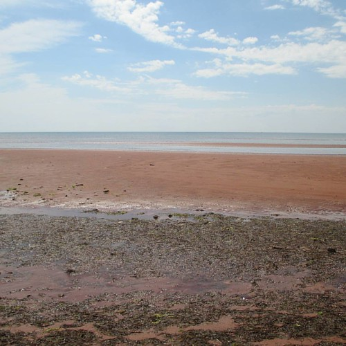 Looking out at low tide #pei #victoria #victoriabythesea #beach #red #lowtide #northumberlandstrait #latergram
