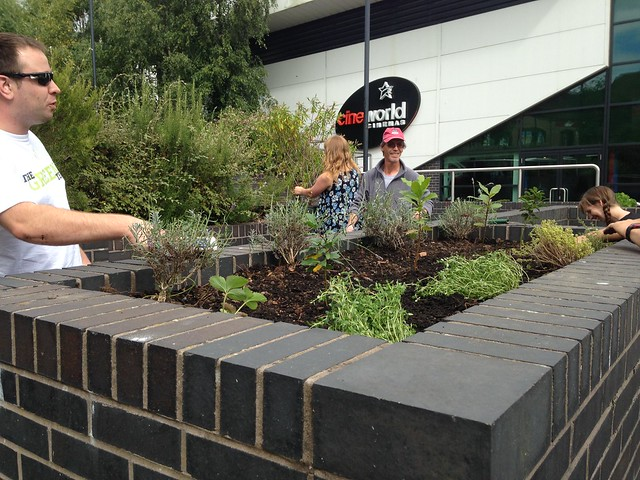 Tibor, a professional gardener from Hungary, planted the first finished bed with lavender, thyme, bay and strawberries.