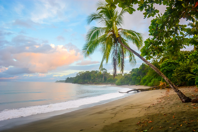 Beach In Costa Rica.jpg