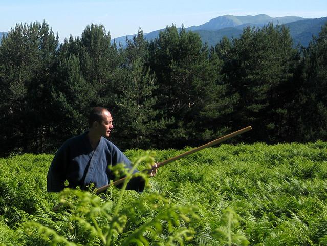 Philippe_hautes-herbes