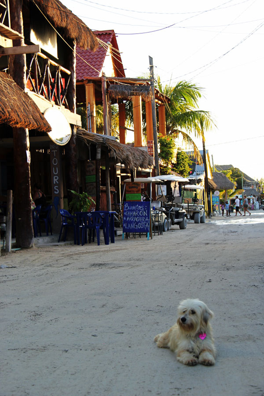 Holbox14_blogi_web