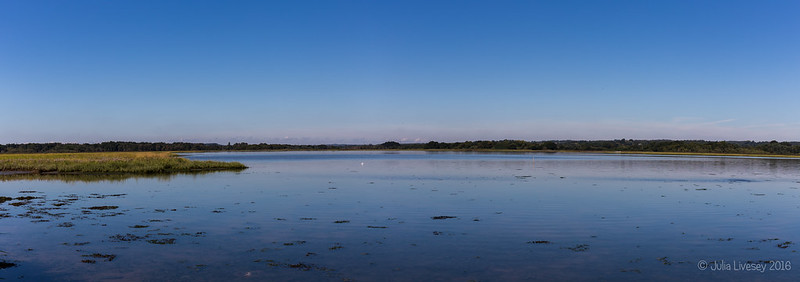 Panorama across Lychett Bay