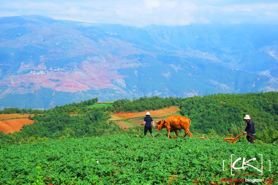Yunnan_0049