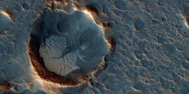 Mars-Space X